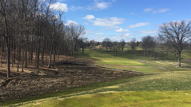 Staples leads Park-inspired renovation at Meadowbrook CC