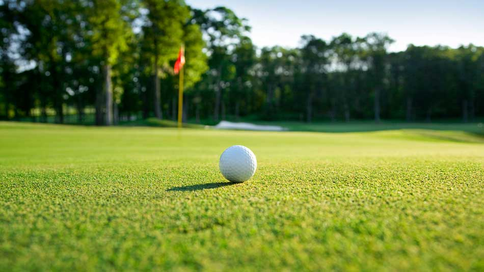 Study finds reduction in the number of fertilised acres on US golf courses
