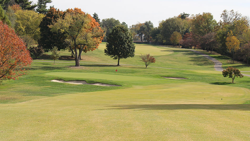 Lester George hired to create masterplan for Audubon CC