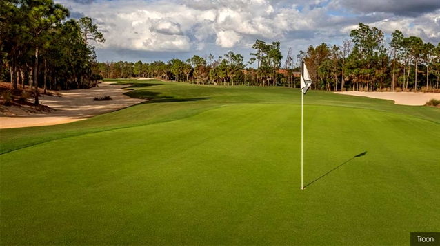 Series of renovations to take place at Tiburón Golf Club's Black Course