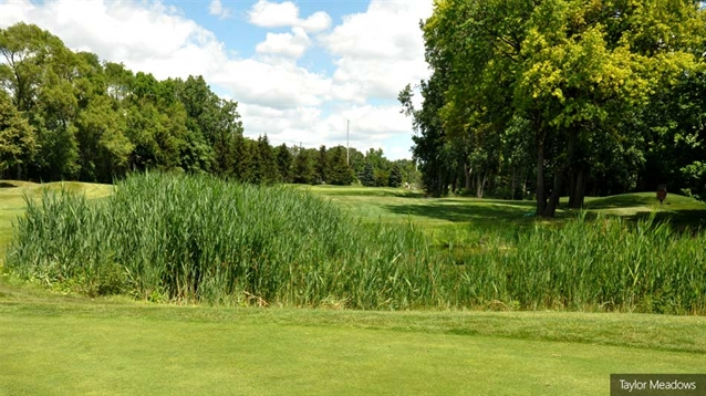 Taylor Meadows course to reopen following work on three holes