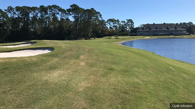 Jacksonville G&CC begins greens and bunkers renovation