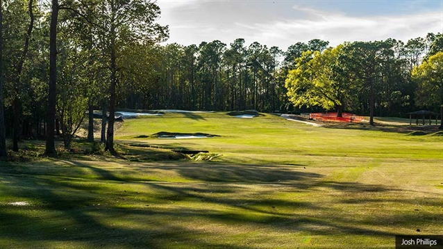 Andrew Green restores Donald Ross features at Cape Fear