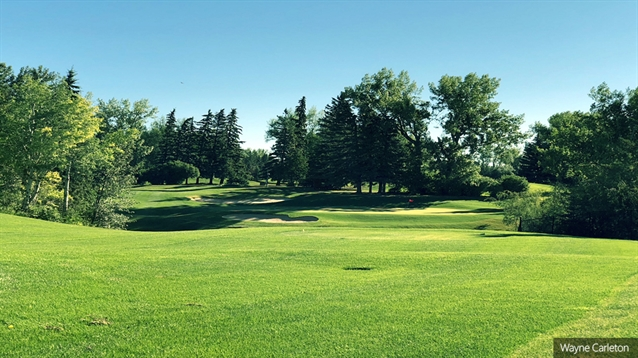Earl Grey GC: An opportunity to create a stronger course