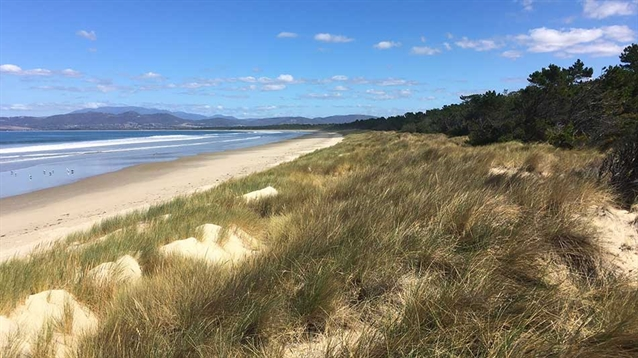 Course work to begin on 'incredible' Seven Mile Beach site in Hobart