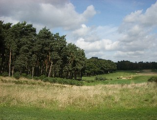 Rescue aids fescue at Bearwood