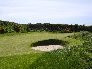 Fescue overseed improves Arklow
