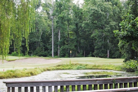 Blue Heron reopens after green regrass