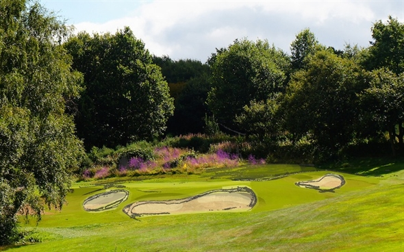 Watson renovates more holes at MacKenzie's Sand Moor