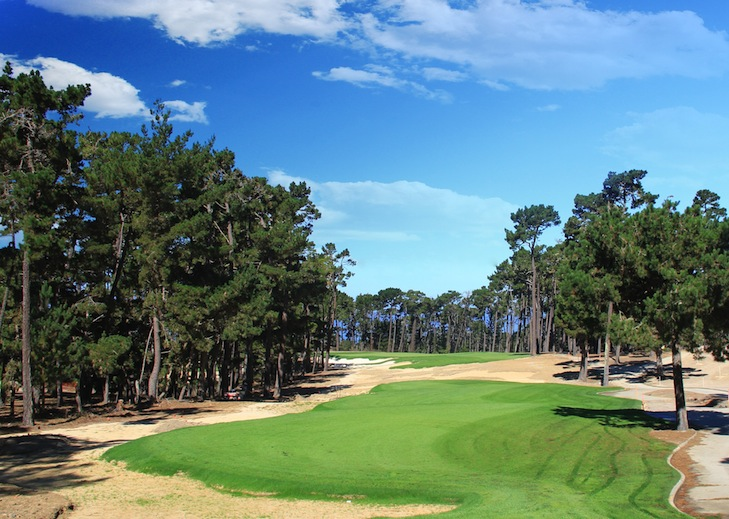 New-look Poppy Hills will be faster, firmer and more fun, says Jones