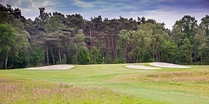 Six holes designed by Frank Pont open at De Dommel