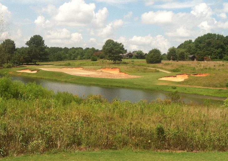 Cuscowilla joins southern US march to ultradwarf bermuda greens