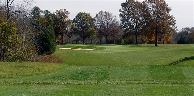 Lohmann Golf Designs begins renovation work at Newman Golf Course